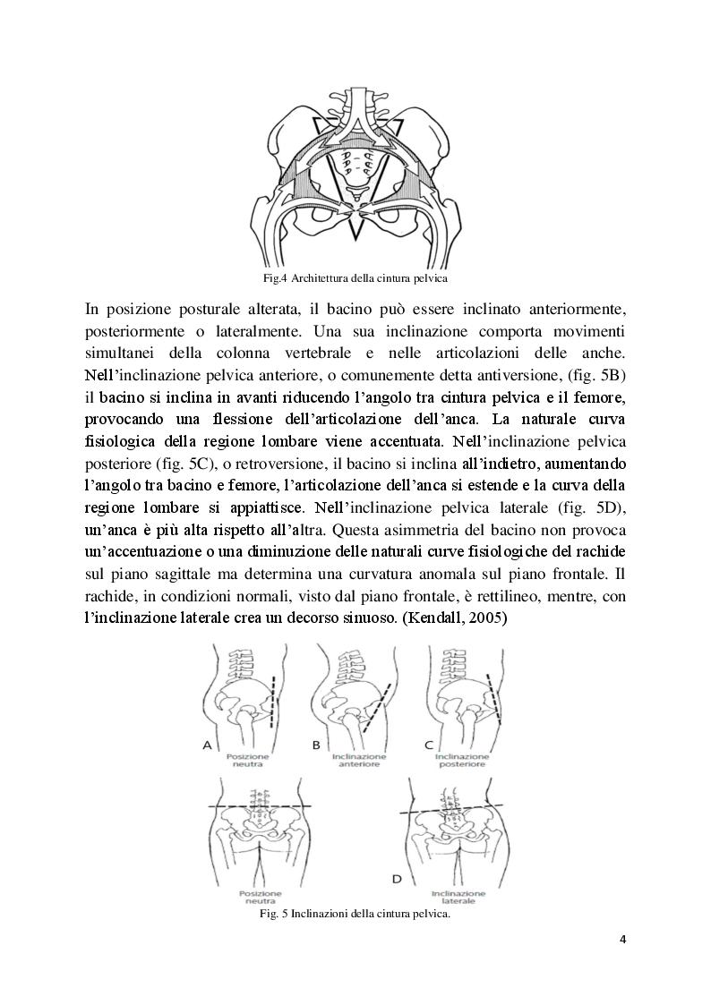 Anteprima della tesi: L'analisi posturale e la pedana stabilometrica-propriocettiva, Pagina 5