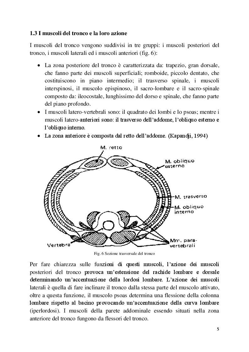Anteprima della tesi: L'analisi posturale e la pedana stabilometrica-propriocettiva, Pagina 6