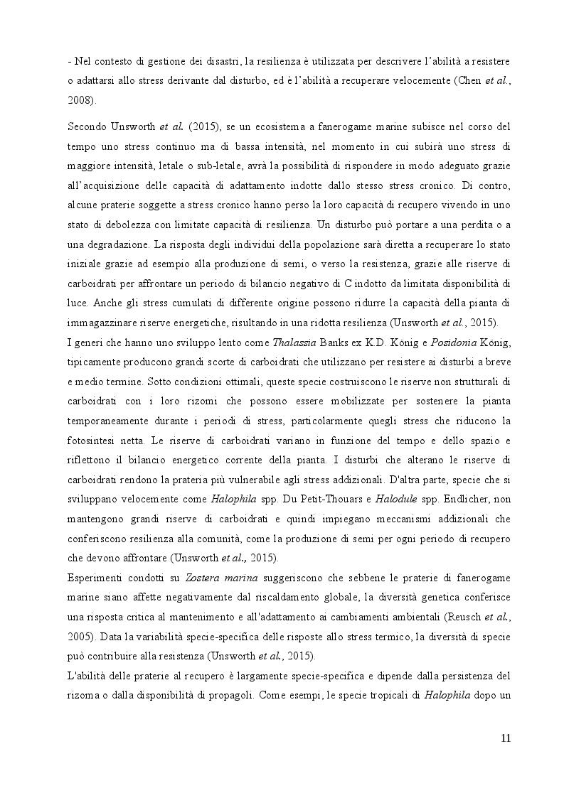 Estratto dalla tesi: Studio sulle risposte allo stress termico in differenti popolazioni mediterranee ed atlantiche di Cymodocea nodosa (Ucria) Ascherson
