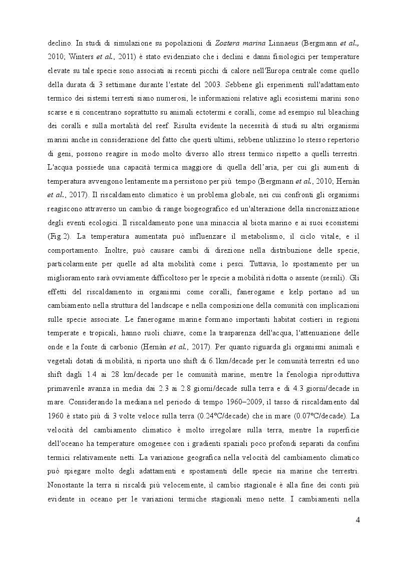 Anteprima della tesi: Studio sulle risposte allo stress termico in differenti popolazioni mediterranee ed atlantiche di Cymodocea nodosa (Ucria) Ascherson, Pagina 3