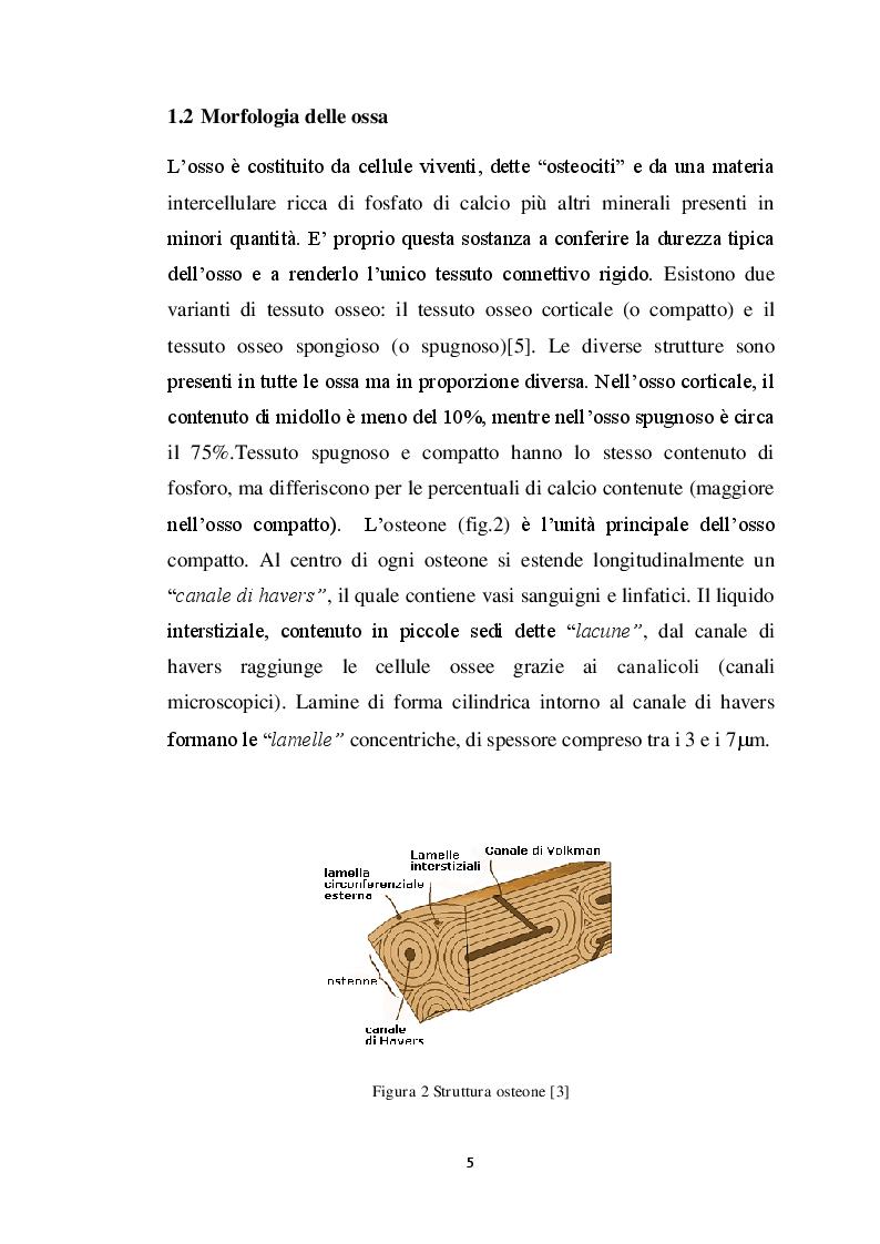 Anteprima della tesi: Analisi dei modelli per l'analisi del contatto fra osso e protesi, Pagina 6