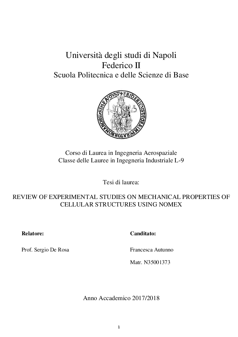 Anteprima della tesi: Review Of Experimental Studies On Mechanical Properties Of Cellular Structures Using Nomex, Pagina 1