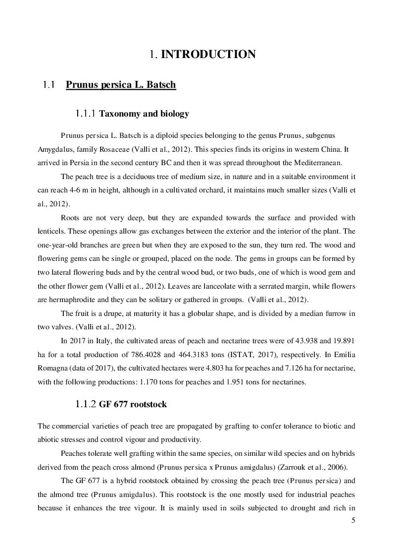Anteprima della tesi: Wastewater as an alternative source for irrigating horticultural crops: investigating Escherichia coli root internalization on GF 677 (Prunus persica x Prunus amigdalus)., Pagina 3