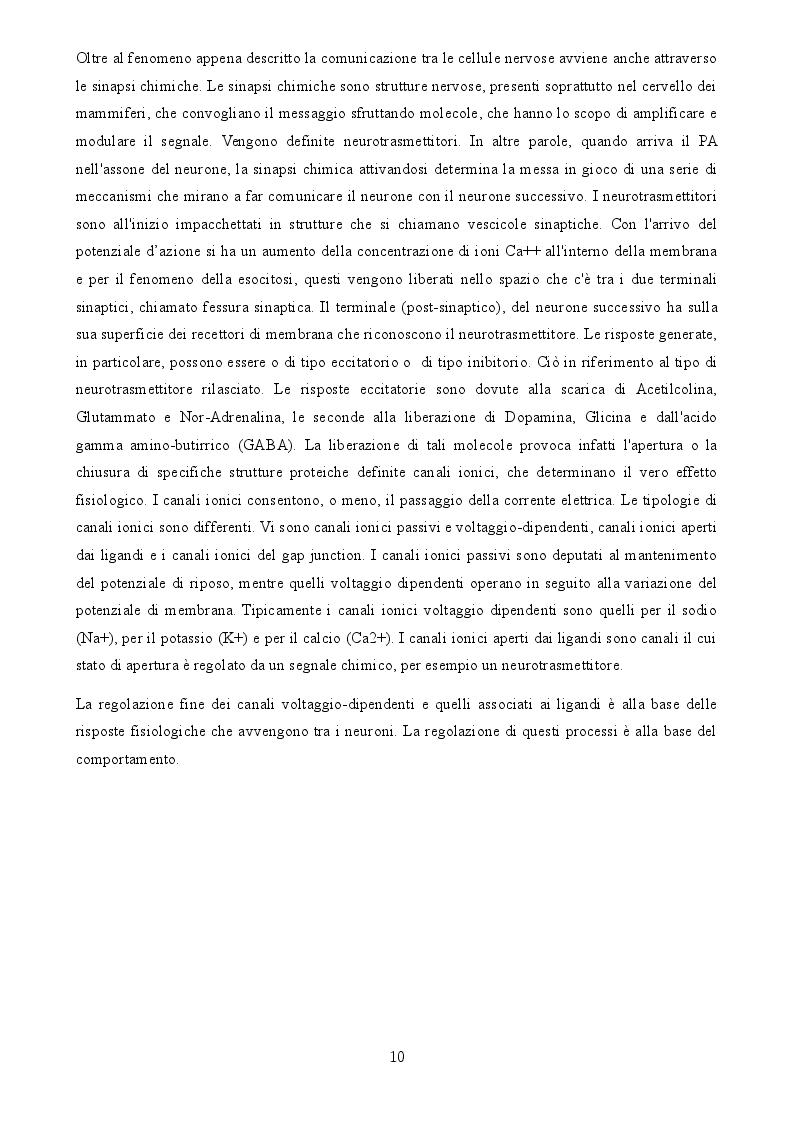 Anteprima della tesi: Uno studio degli effetti della tDCS sui processi di apprendimento visuo-spaziale, Pagina 5