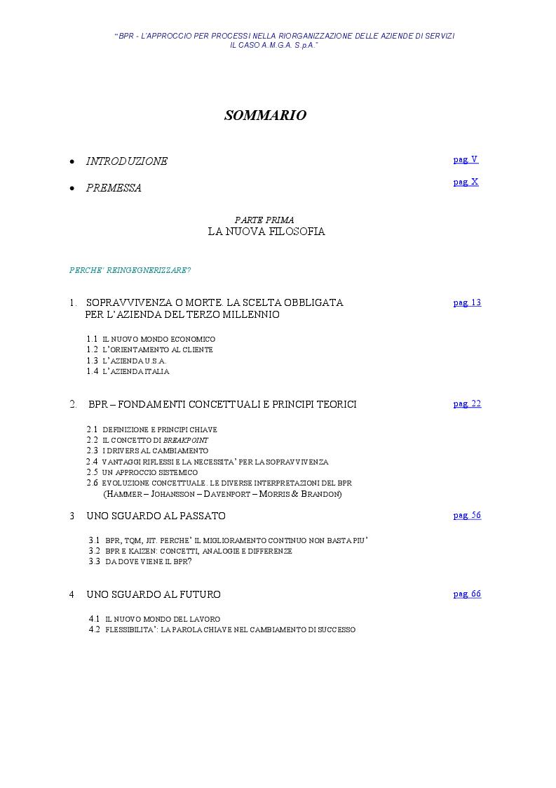 Indice della tesi: BPR - L'approccio per processi nella riorganizzazione delle aziende di servizi - Il caso AMGA S.p.A., Pagina 1