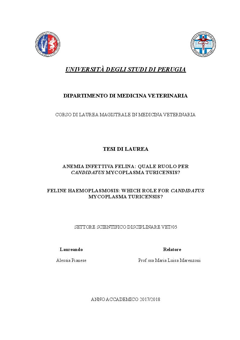 Anteprima della tesi: Anemia infettiva felina: quale ruolo per Candidatus Mycoplasma turicensis?, Pagina 1