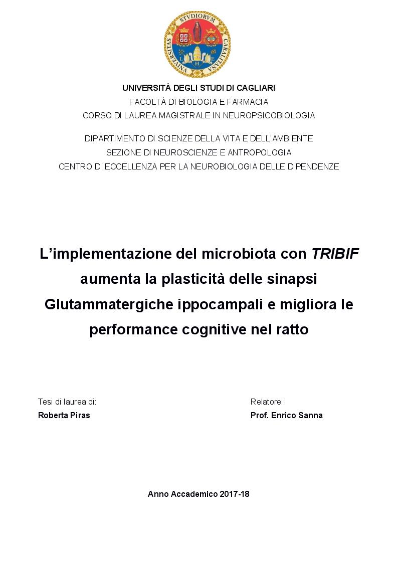 Anteprima della tesi: L'implementazione del microbiota con TRIBIF® aumenta la plasticità delle sinapsi glutammatergiche ippocampali e migliora le performance cognitive nel ratto, Pagina 1