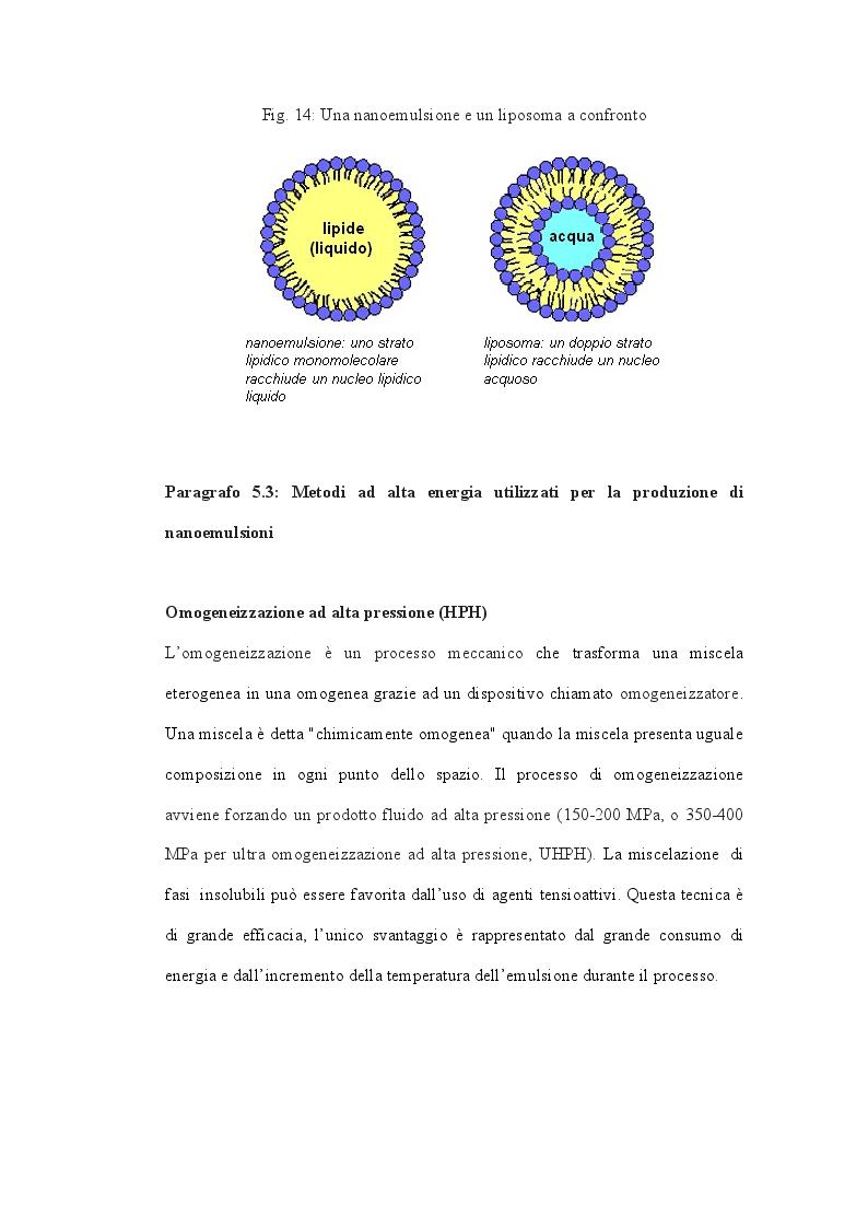 Anteprima della tesi: Quando la nanoscienza incontra gli alimenti, Pagina 9