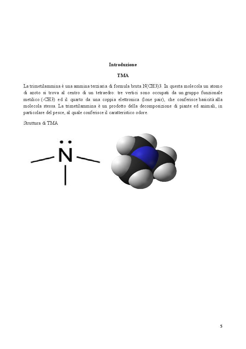 Anteprima della tesi: Effetti di un estratto polifenolico da vinacce di cultivar Aglianico sui livelli sierici di TMAO: risultati preliminari di uno studio cross-over randomizzato, controllato, contro placebo., Pagina 3