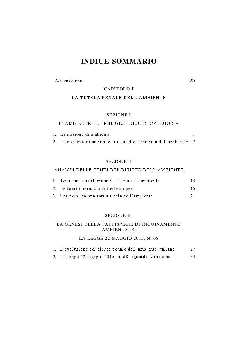 Indice della tesi: Il delitto di inquinamento ambientale, Pagina 1
