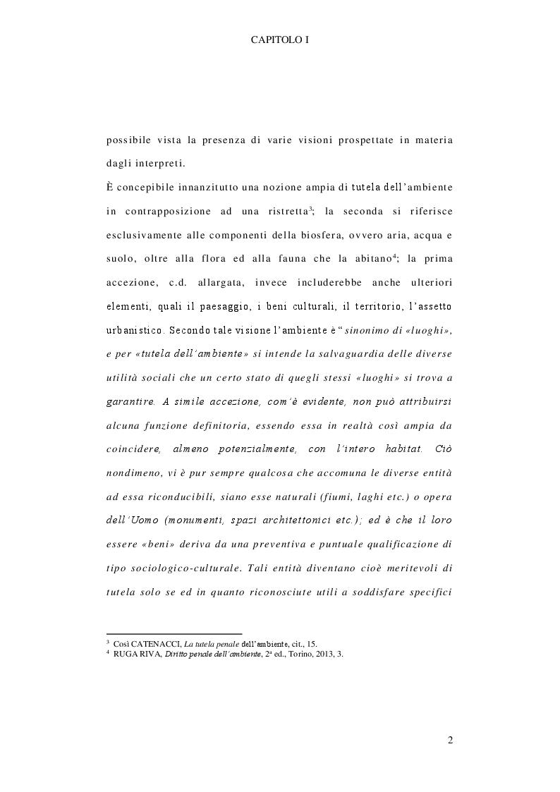 Anteprima della tesi: Il delitto di inquinamento ambientale, Pagina 3