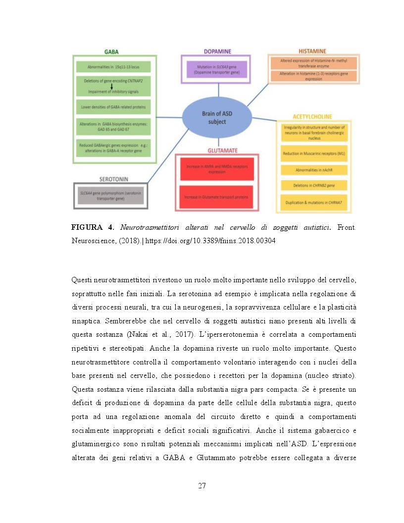 Anteprima della tesi: Il ruolo dell'attività fisica nel miglioramento delle abilità sociali nei soggetti autistici, Pagina 8