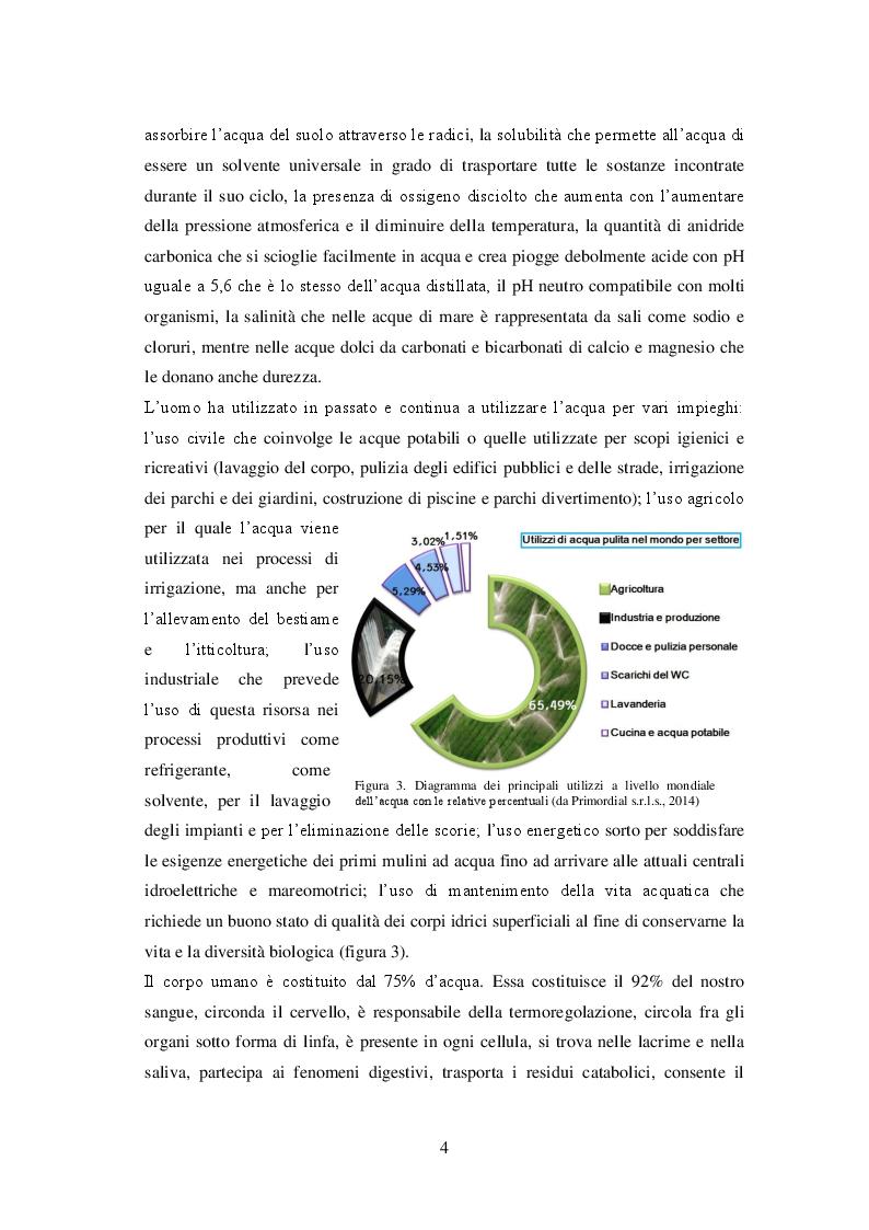 Anteprima della tesi: Sistemi di irrigazione in pieno campo: l'utilizzo efficiente e sostenibile della risorsa idrica per un miglioramento dei possibili scenari futuri, Pagina 5