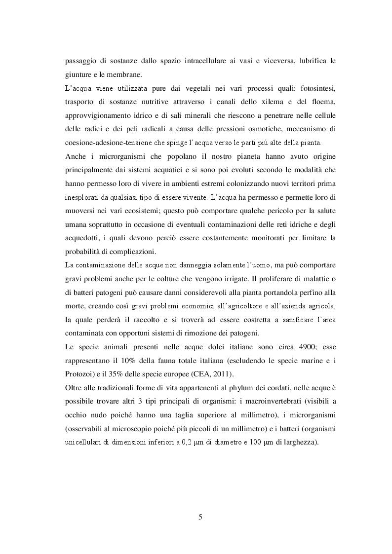 Anteprima della tesi: Sistemi di irrigazione in pieno campo: l'utilizzo efficiente e sostenibile della risorsa idrica per un miglioramento dei possibili scenari futuri, Pagina 6