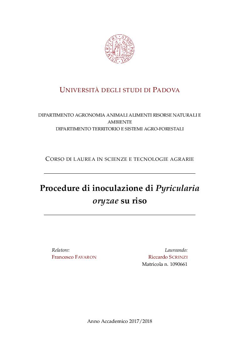 Anteprima della tesi: Procedure di inoculazione di Pyricularia oryzae su riso, Pagina 1
