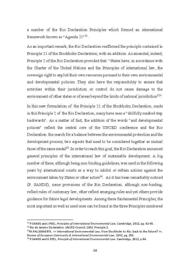 Anteprima della tesi: The development of the Precautionary Principle in International Customary Law, Pagina 10