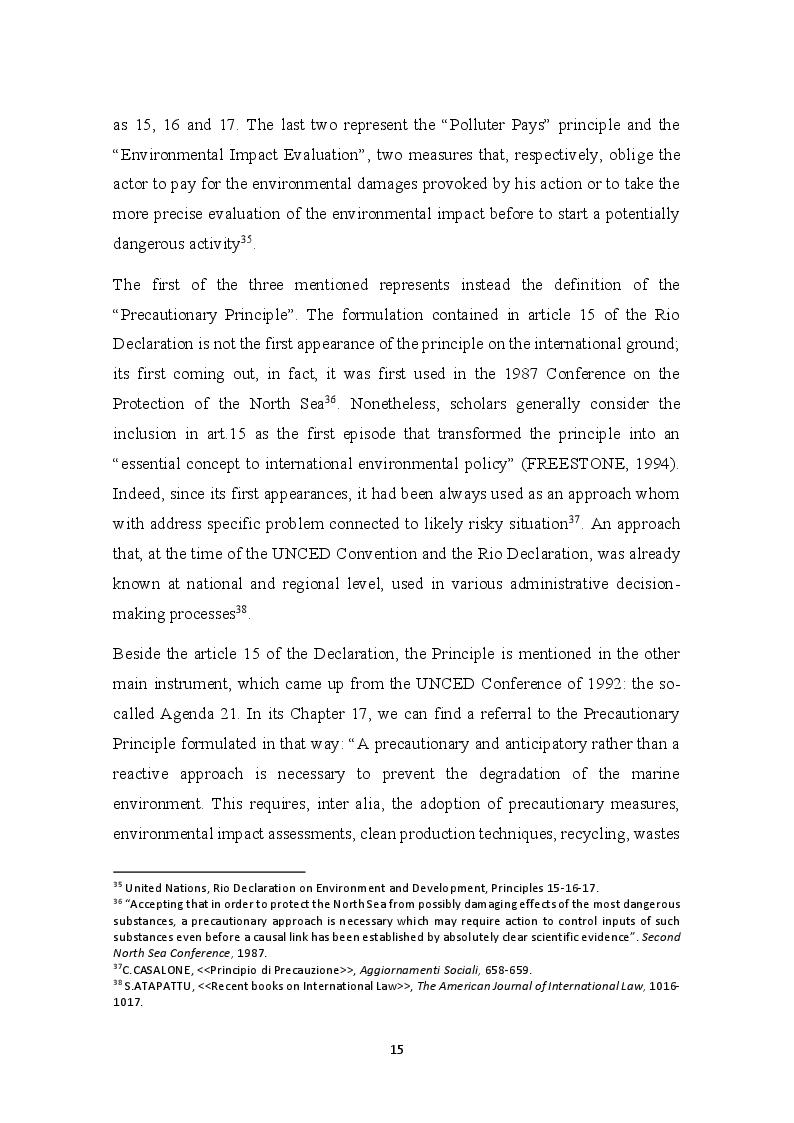 Anteprima della tesi: The development of the Precautionary Principle in International Customary Law, Pagina 11