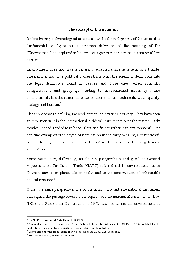 Anteprima della tesi: The development of the Precautionary Principle in International Customary Law, Pagina 4