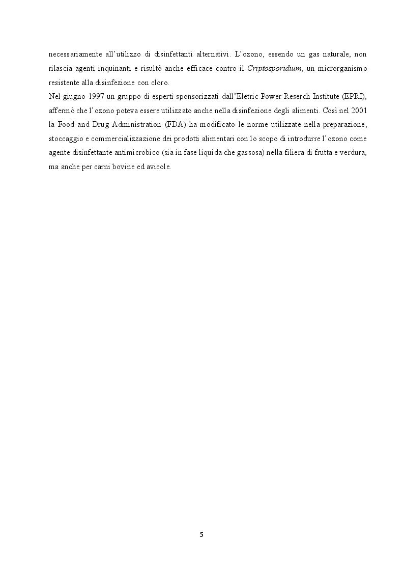 Anteprima della tesi: Utilizzo dell'ozono per il trattamento di alimenti conservati in frigorifero domestico, Pagina 3