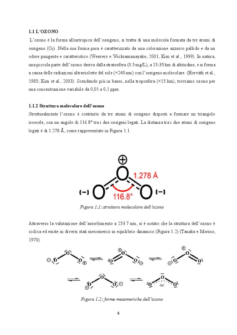 Anteprima della tesi: Utilizzo dell'ozono per il trattamento di alimenti conservati in frigorifero domestico, Pagina 4