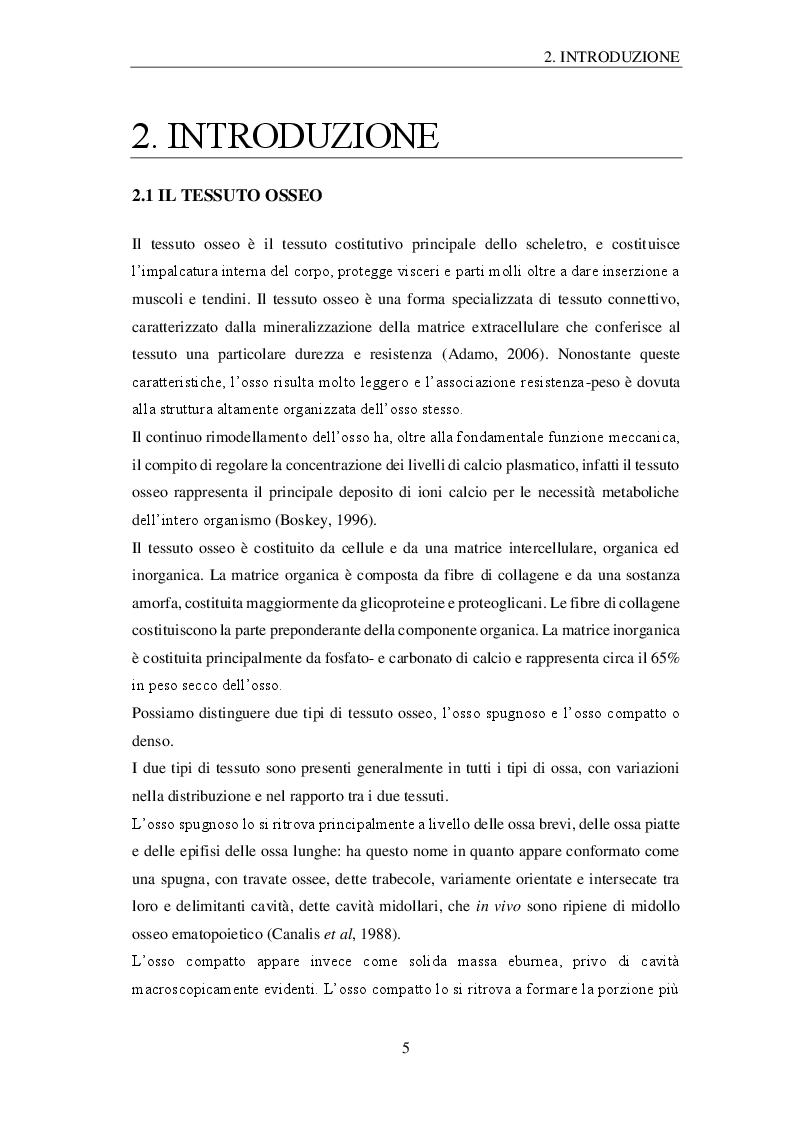 Anteprima della tesi: Effetti della microgravità sugli osteoblasti: profilo proteomico e metabolomico, Pagina 2