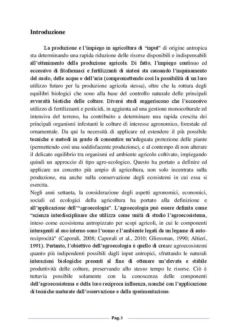 Anteprima della tesi: Analisi degli effetti della fertilizzazione azotata sulle infestazioni di Myzus persicae nicotiane (Blackman) su tabacco (Nicotiana tabacum L.), Pagina 2