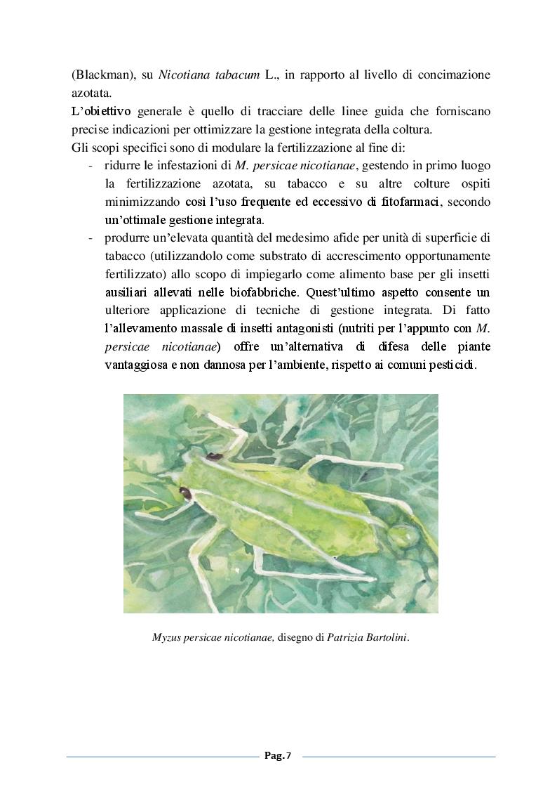 Anteprima della tesi: Analisi degli effetti della fertilizzazione azotata sulle infestazioni di Myzus persicae nicotiane (Blackman) su tabacco (Nicotiana tabacum L.), Pagina 4