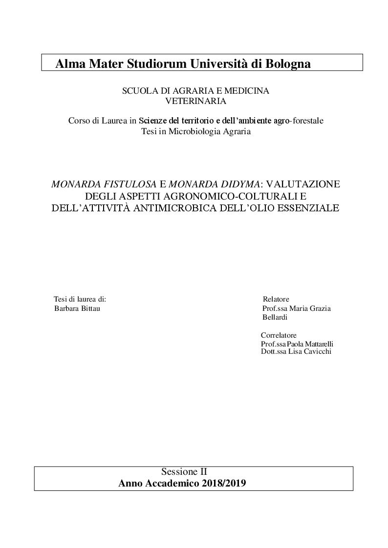 Anteprima della tesi: Monarda fistulosa e Monarda dydima: valutazione degli aspetti agronomico-colturali e dell'attività antimicrobica dell'olio essenziale, Pagina 1