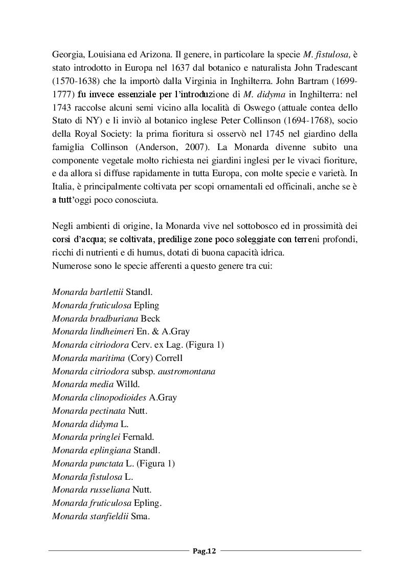 Anteprima della tesi: Monarda fistulosa e Monarda dydima: valutazione degli aspetti agronomico-colturali e dell'attività antimicrobica dell'olio essenziale, Pagina 3