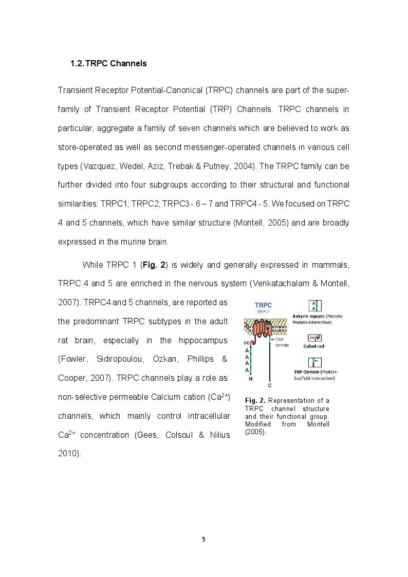 Anteprima della tesi: Role of TRPC channels in temporal association tasks, Pagina 3