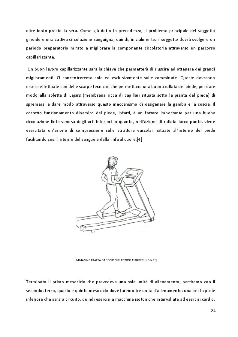 Anteprima della tesi: I biotipi costituzionali, la progettazione di un allenamento, Pagina 3