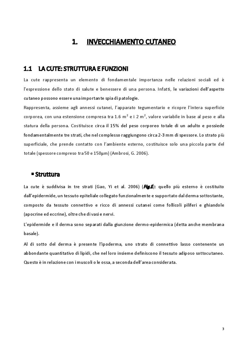 Anteprima della tesi: Sviluppo di formulazioni anti-ageing: focus su Argirelina (Acetil-esapeptide-8), Pagina 2