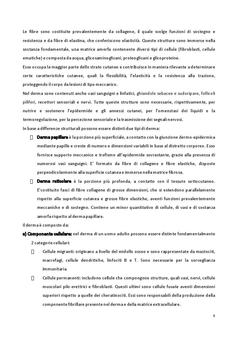 Anteprima della tesi: Sviluppo di formulazioni anti-ageing: focus su Argirelina (Acetil-esapeptide-8), Pagina 5