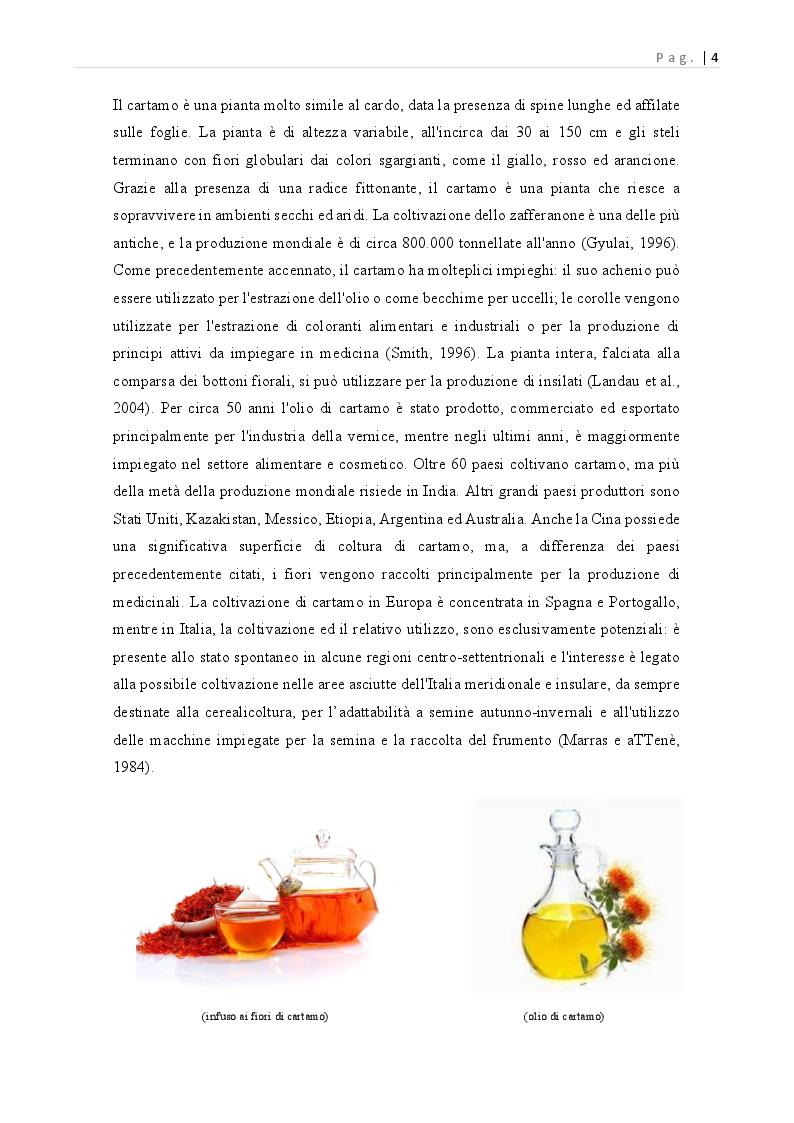 Anteprima della tesi: Carthamus tinctorius: opportunità di impiego alimentare, Pagina 5