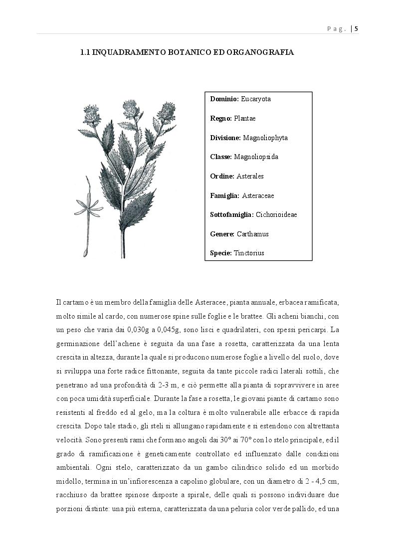 Anteprima della tesi: Carthamus tinctorius: opportunità di impiego alimentare, Pagina 6