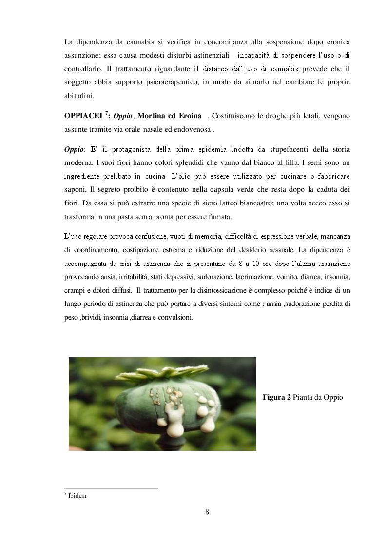 Anteprima della tesi: La Neve che cade sul mondo : Cocaina e Narcotraffico, Pagina 3