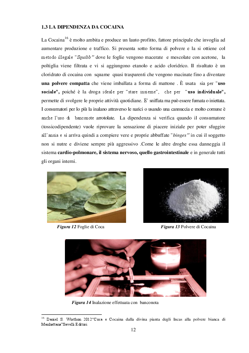 Anteprima della tesi: La Neve che cade sul mondo : Cocaina e Narcotraffico, Pagina 7