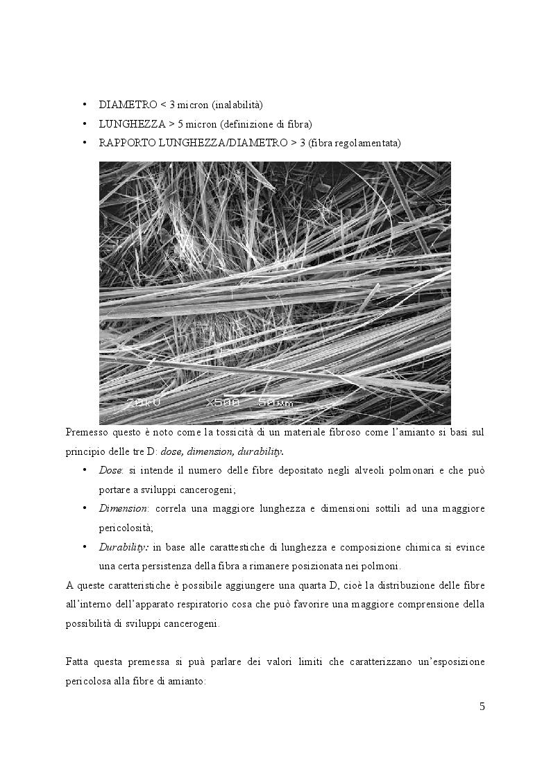 Anteprima della tesi: Valutazione e gestione del rischio amianto nelle strutture edilizie, Pagina 6