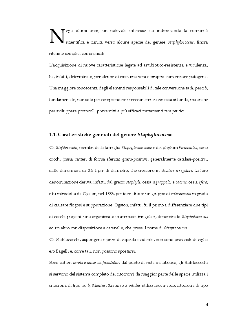 Anteprima della tesi: Staphylococcus arlettae: antibiotico-resistenza e virulenza, Pagina 3