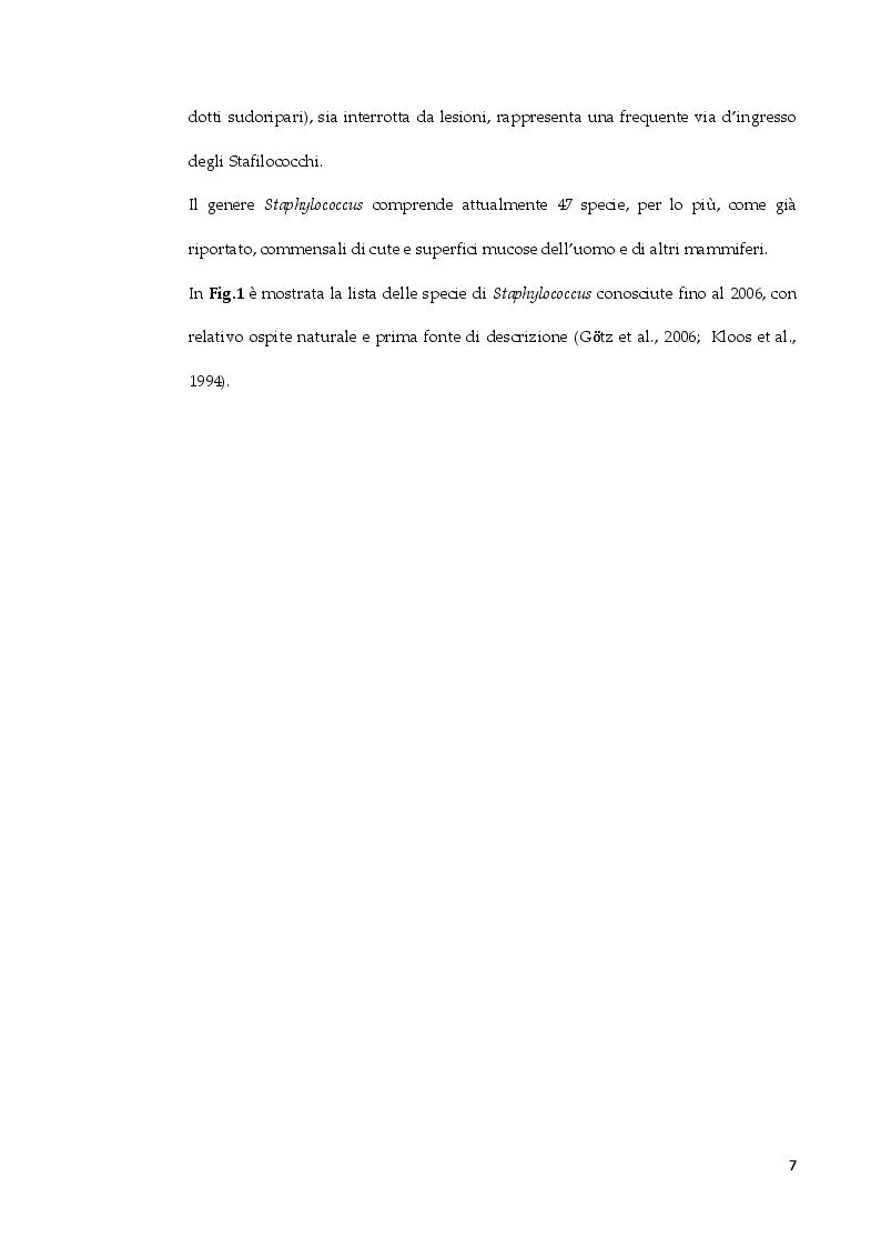 Anteprima della tesi: Staphylococcus arlettae: antibiotico-resistenza e virulenza, Pagina 6