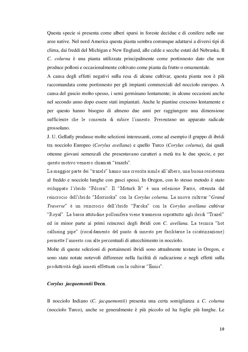 Estratto dalla tesi: Modulazione della concentrazione di azoto e ferro sulla micropropagazione del nocciolo (Corylus avellana L.)