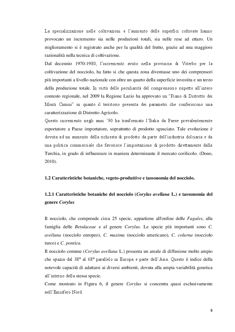 Anteprima della tesi: Modulazione della concentrazione di azoto e ferro sulla micropropagazione del nocciolo (Corylus avellana L.), Pagina 7