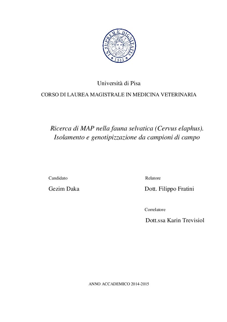 Anteprima della tesi: Ricerca di MAP nella fauna selvatica (Cervus elaphus). Isolamento e genotipizzazione da campioni di campo, Pagina 1