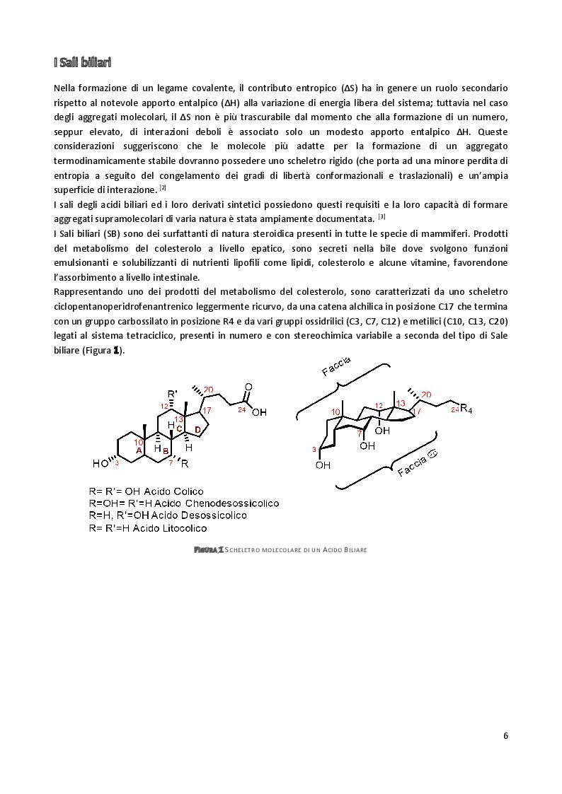Anteprima della tesi: Sintesi e caratterizzazione di anfifili steroidei per marcatura di complessi supramolecolari, Pagina 3