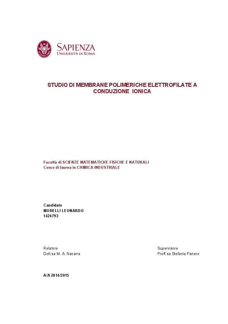 Anteprima della tesi: Studio di membrane polimeriche elettrofilate a conduzione ionica, Pagina 1