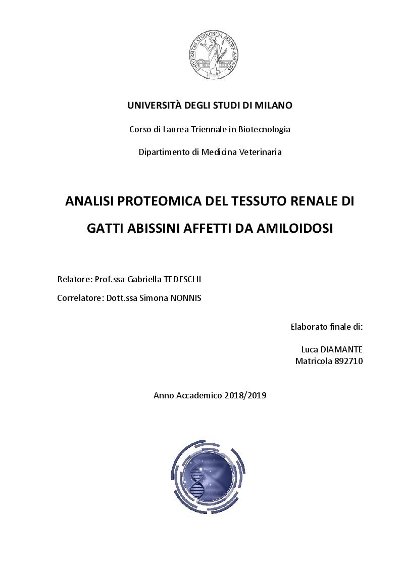 Anteprima della tesi: Analisi proteomica del tessuto renale di gatti abissini affetti da amiloidosi, Pagina 1