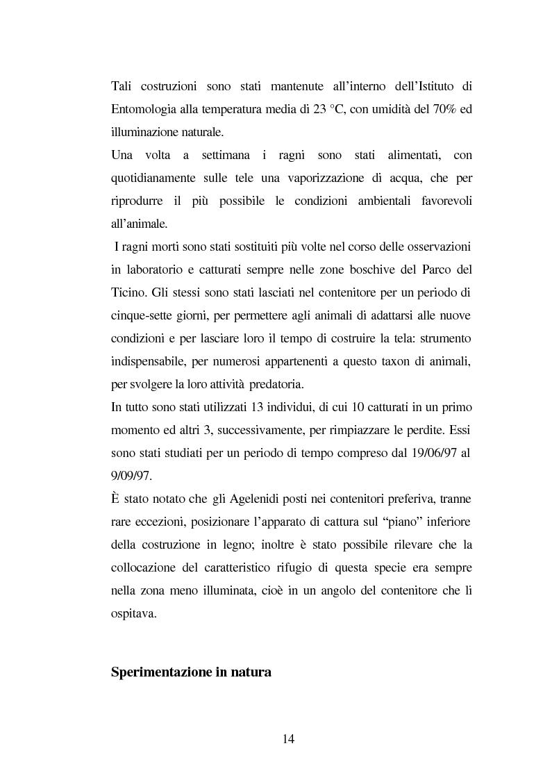 Anteprima della tesi: Predazione di Agelena Labyrinthica (Clerk) (Araneae, Agelenidae) in natura e laboratorio, con prede di tipologia differente, Pagina 12