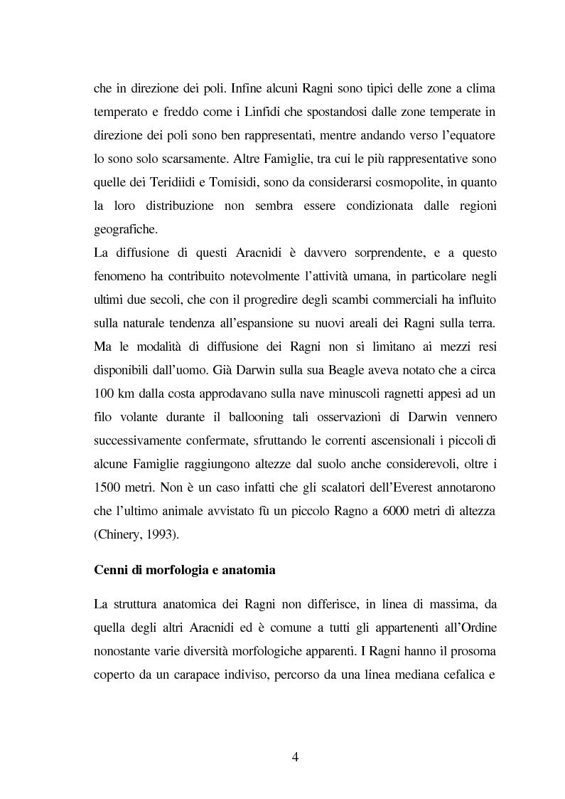 Anteprima della tesi: Predazione di Agelena Labyrinthica (Clerk) (Araneae, Agelenidae) in natura e laboratorio, con prede di tipologia differente, Pagina 2