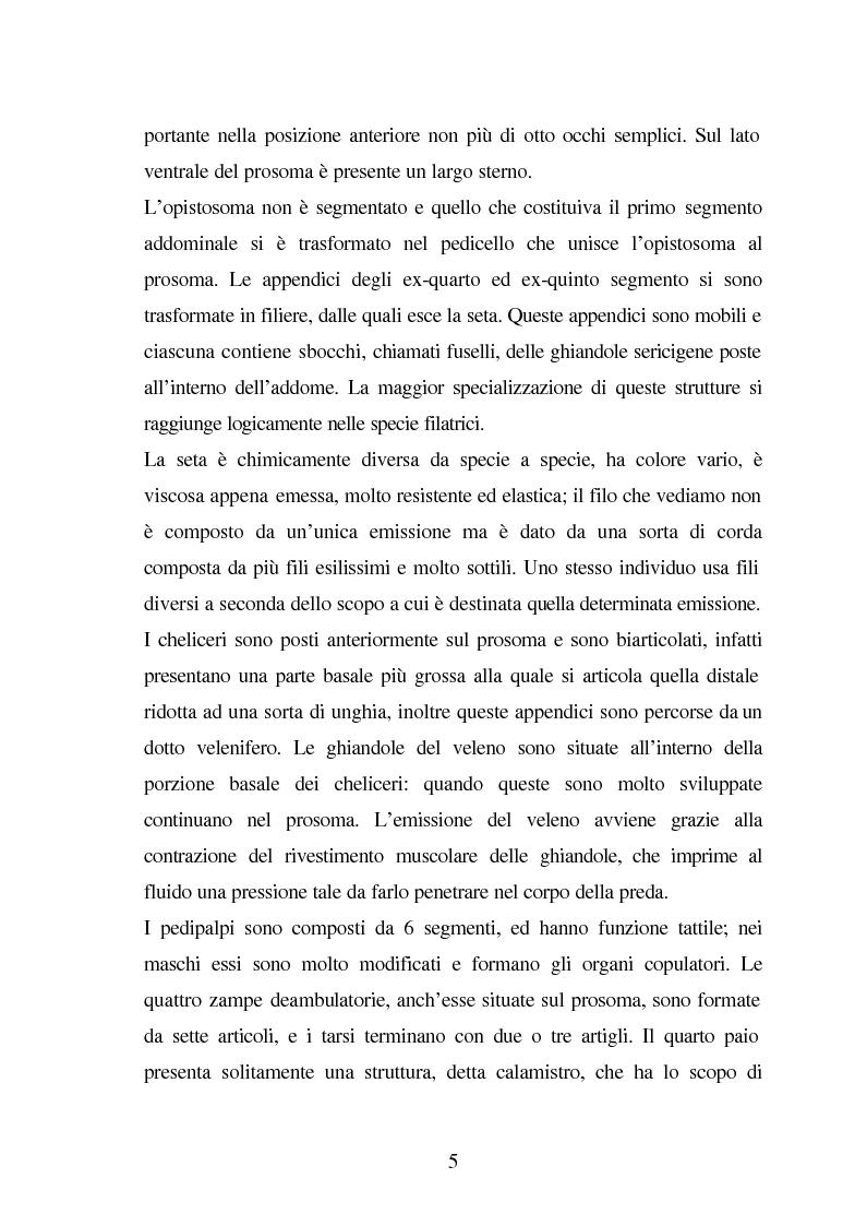 Anteprima della tesi: Predazione di Agelena Labyrinthica (Clerk) (Araneae, Agelenidae) in natura e laboratorio, con prede di tipologia differente, Pagina 3