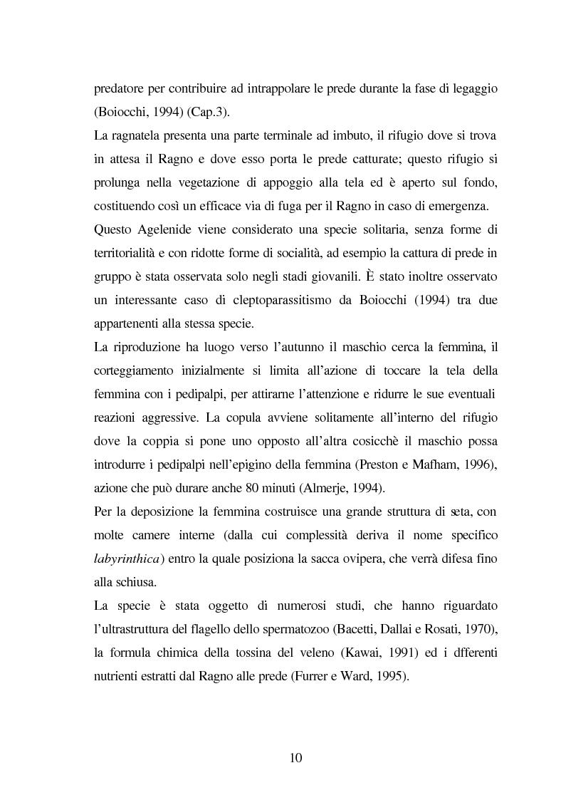 Anteprima della tesi: Predazione di Agelena Labyrinthica (Clerk) (Araneae, Agelenidae) in natura e laboratorio, con prede di tipologia differente, Pagina 8